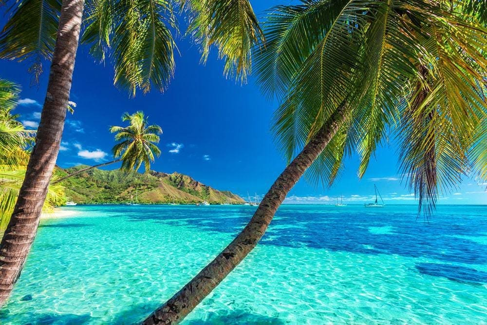 Quiet Tahitian Lagoon